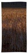 Cattail Bog   #3868 Bath Towel