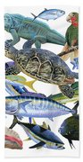 Cayman Collage Bath Towel