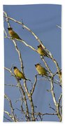 Cedar Waxwings Bath Towel