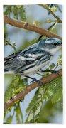 Cerulean Warbler Bath Towel