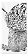 Chambered Nautilus Bath Towel