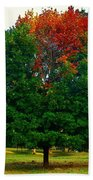Changing Seasons Bath Towel