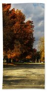 Changing To Fall Colors In Dwight Il Bath Towel