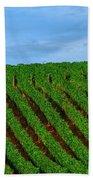 Chardonnay Sky 17990 Bath Towel