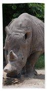 Waco Texas Rhinoceros Bath Towel