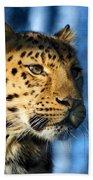 Cheetah Acinonyx Jubatus Bath Towel
