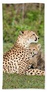 Cheetah Cub Acinonyx Jubatus Playing Bath Towel