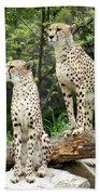 Cheetah's 02 Bath Towel