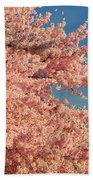 Cherry Blossoms 2013 - 013 Bath Towel