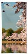 Cherry Blossoms 2013 - 023 Bath Towel