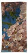 Cherry Blossoms 2013 - 035 Bath Towel