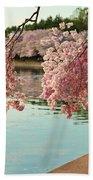 Cherry Blossoms 2013 - 085 Bath Towel