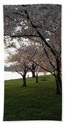 Cherry Blossoms Along The Potomac Bath Towel