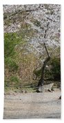 Cherry Lane Series  Picture J Bath Towel