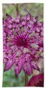 Cherry-queen Of The Prairie Flower Bath Towel
