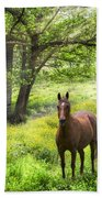 Chestnut Horse In A Sunny Meadow Hand Towel