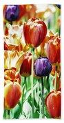 Chicago Tulips Bath Towel