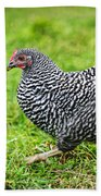 Chicken Walking On Green Pasture Bath Towel