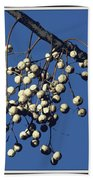 China Berry Cluster Bath Towel