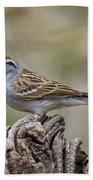 Chipping Sparrow Bath Towel