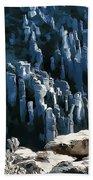 Chiricahua Pinnacles D Bath Towel