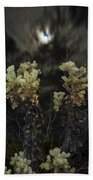 Cholla Light - Joshua Tree National Park Bath Towel