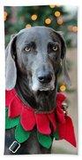 Christmas Dog Bath Towel