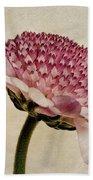 Chrysanthemum Domino Pink Bath Towel