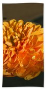 Chrysanthemum Gently Floating In The Fountain Of Campo De Fiori - Rome - Italy Bath Towel