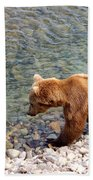 Cinnamon-colored Grizzly Bear By Moraine River In Katmai Np-ak  Bath Towel