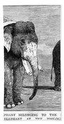 Circus Elephants, 1884 Bath Towel