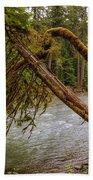 Cispus River At Iron Creek - Washington State Bath Towel