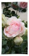 Classic Rose Bath Towel