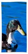 Close Up Duck Bath Towel