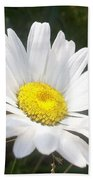 Close Up Of A Margarite Daisy Flower Hand Towel