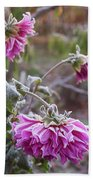 Close-up Of Flowers Covered By Frost Hand Towel