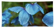 Close-up Of Himalayan Poppy Flowers Hand Towel