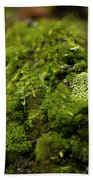 Closeup Of Moss And Lichen. Rhoen Bath Towel