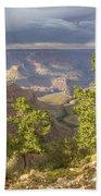 Cloudy Bright Angel Trail II Bath Towel