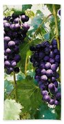 Clusters Of Red Wine Grapes Hanging On The Vine Bath Towel