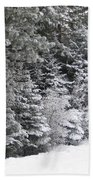 Coal Miner's Trail Bath Towel