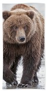 Coastal Brown Bear A Walk On The Beach Bath Towel