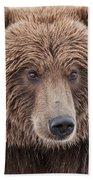 Coastal Brown Bear Closeup Bath Towel