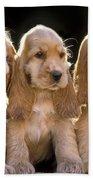 Cocker Spaniel Puppies Bath Towel