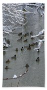 Cold Ducks Bath Towel