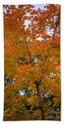 Color Of Fall Bath Towel