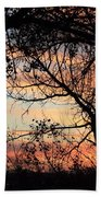 Color Through The Trees Bath Towel
