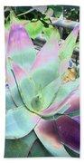 Colorful  Aloa Vera Bath Towel
