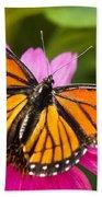 Orange Viceroy Butterfly Bath Towel