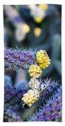 Colorful Cactus Red Purple Green Yellow Plant Fine Art Photography Print  Bath Towel